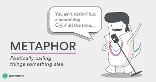 Image result for metaphor
