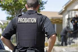 Image result for parole officer
